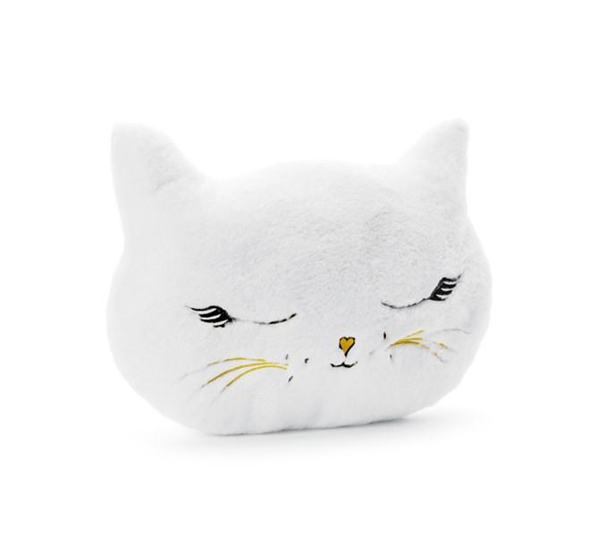 Kudde Katt