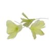 Fjäder blomma lime 12-pack