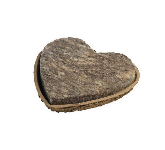 Oasis Biolit Hjärta 27 cm, FibreFloral