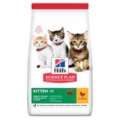 Hills Katt Kitten kyckling