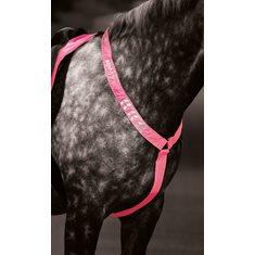 Förbygel Equi-flector Pink