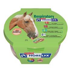 Slicksten Horselyx respiratory 650gr