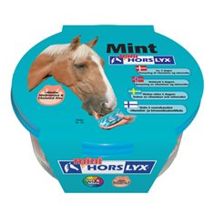 Slicksten Horselyx mint 650gr