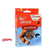 Hundgodis Pets Up Bites lax 100gr