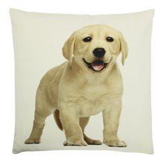 Kudde Canvas Labrador ljus