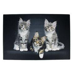 Dörrmatta inomhus 3 Kittens black