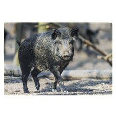 Dörrmatta inomhus Wild boar black