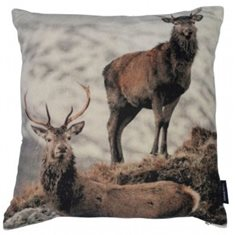 Kudde velvet deer on mountain 45x45
