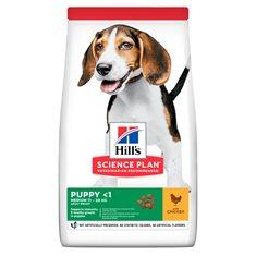 Hills Hund Puppy Medium 12kg chicken