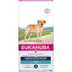 Euk Dog Labrador