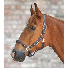 Grimma Hästmotiv Asphalt