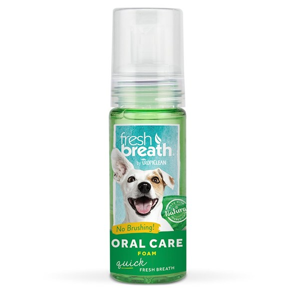 Freshbreath 133ml foam