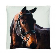 Kudde Canvas Horse