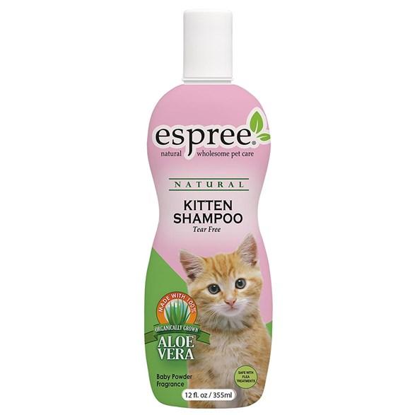 Schampoo Kitten