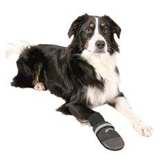 Hundskor Walker Prof 2-p