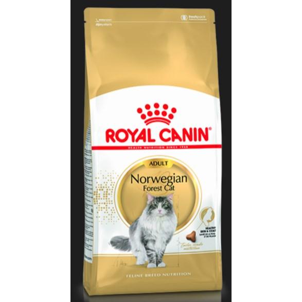 Royal Canin Norsk Skogkatt