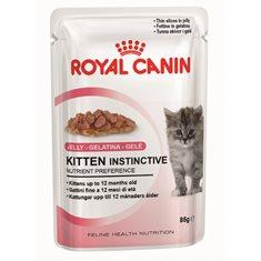 Royal Canin Kitten Jelly 12*85