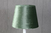 Skärm sammet grön