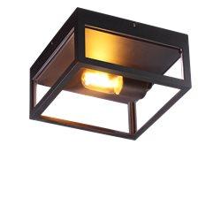 Aneta Belysning ARENDAL plafond ute, svart