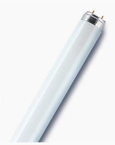 Osram T8 L 18W/840 Lumilux Cool White G13. 590 mm