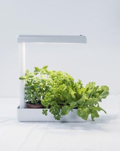 Herby LED-Växtarmatur 12W/840