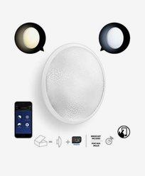 Philips Hue Color Tone Phoenix WALL