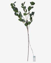 Star Trading Dekorationskvist Eucalyptus