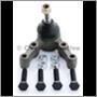 Ball-joint kit lower, Amazon/P1800
