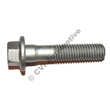 Flange screw