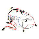 Wiring harness, dash lighting 1800E/ES LHD 1970-72