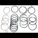 Piston ring set B21    (1 engine - 0.5) (not B21ET/FT)