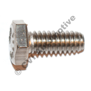 Screw (stainless)