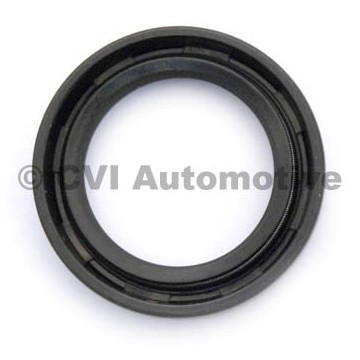 Oil seal lower, steering-box (PV544/P210/Amazon/P1800)