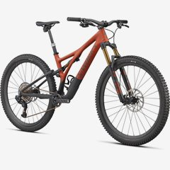 STUMPJUMPER S-WORKS