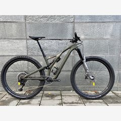 Sworks Stumpjumper Custom Build 2020. XX1 Eagle