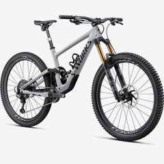 ENDURO S-WORKS CARBON 29