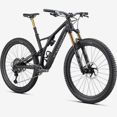 STUMPJUMPER SWORKS CARBON 29