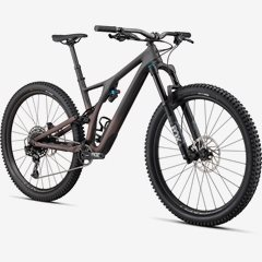 SJ COMP CARBON EVO 29