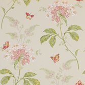 Colefax and Fowler Messina - Pink/Green
