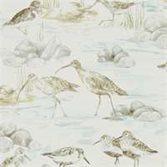 Sanderson Estuary Birds