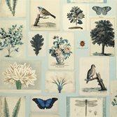 John Derian Flora and Fauna - Cloud Blue