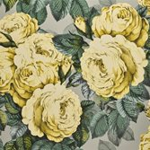 Designers Guild The Rose - Mimosa