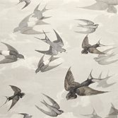 John Derian Chimney Swallows - Dusk
