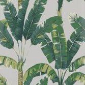 Osborne & little Palmaria - Pale Stone/Forest/Lime
