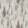 Sanderson Juniper Pine