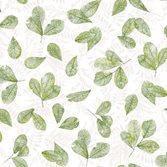 Galerie Evergreen
