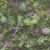 Galerie - Tapetterminalen Evergreen