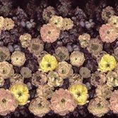 Designers Guild Le Poème de Fleurs