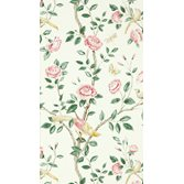 Sanderson Andhara Rose/Cream