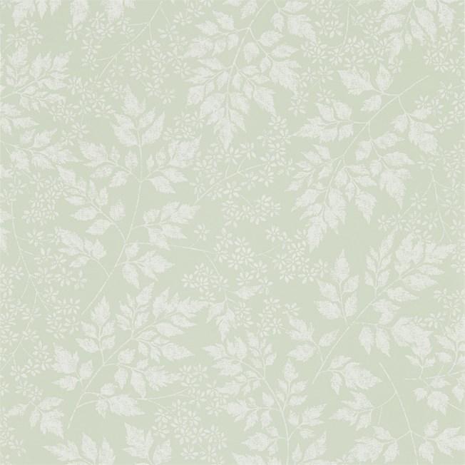 Sanderson Spring Leaves